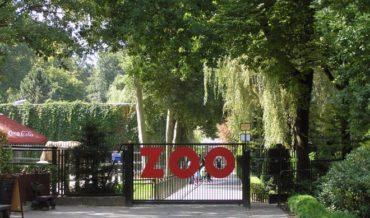 Zoological garden in Krakow
