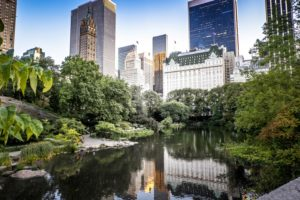 central park buildings new york